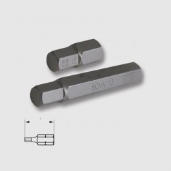 Bit 10mm/30mm Imbus 12